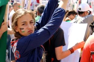 Gaza Rally, Summer 2014