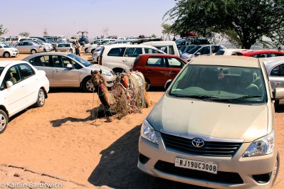 Camel parking, anyone?