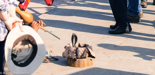 Snake charmer. Not going to lie, it was interesting to see even if it is animal cruelty.